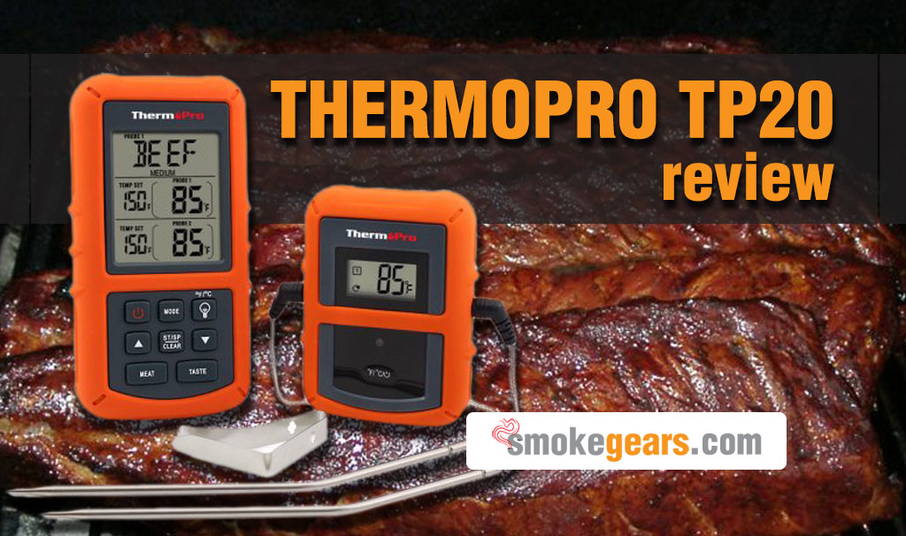 Thermopro tp20 review