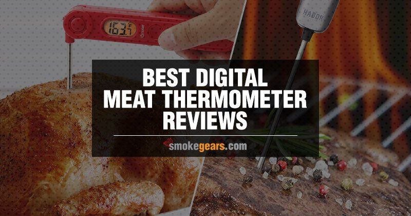 Best Digital Meat Thermometer reviews